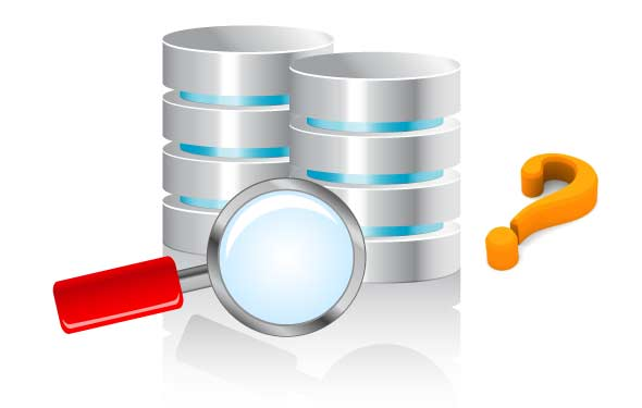 Custom Database Solutions